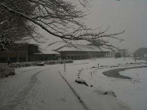 長野市立博物館の外観(2011年1月15日,大雪の日)
