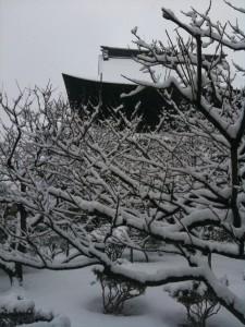 善光寺北口から本堂を見る(2011年1月15日,大雪の日)